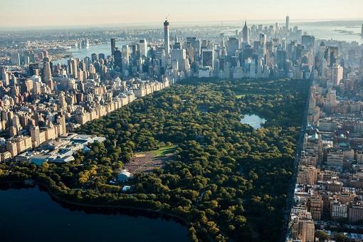 New York - Thành phố xanh tươi